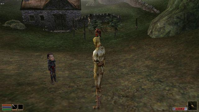game mods Oblivion