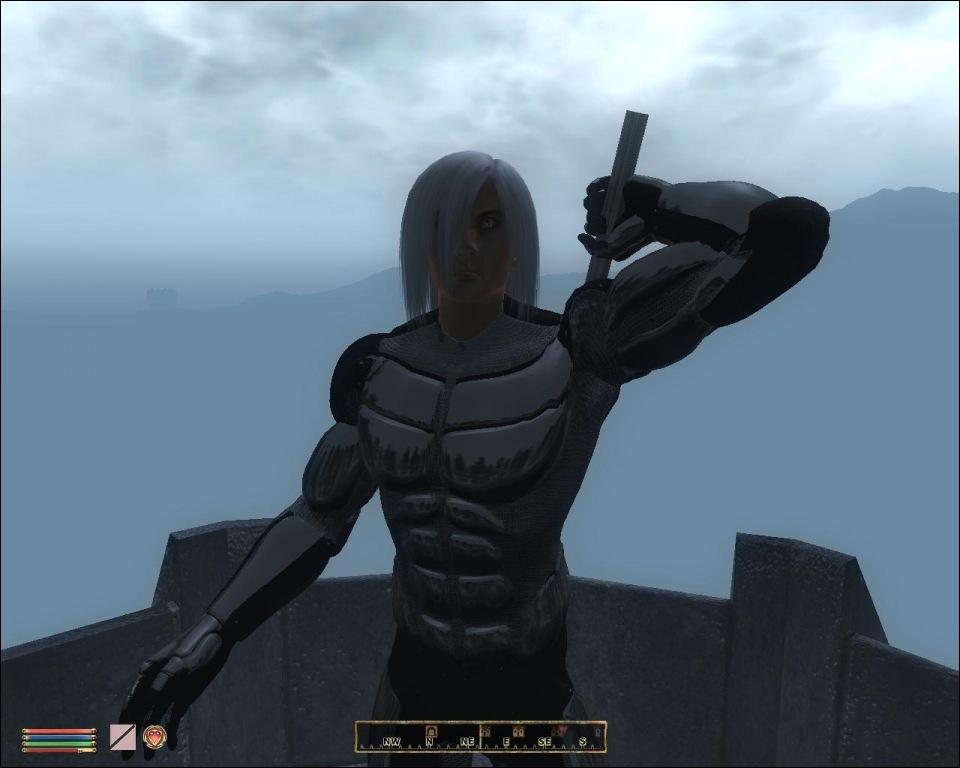 Raiden Enters Oblivion | Game Front